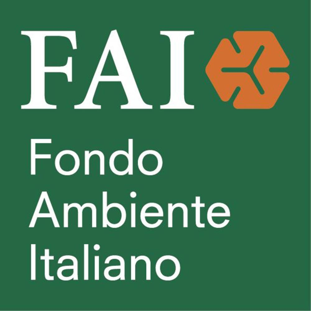 logo_FAI