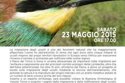 migrazione_nidificazione_23maggio-02
