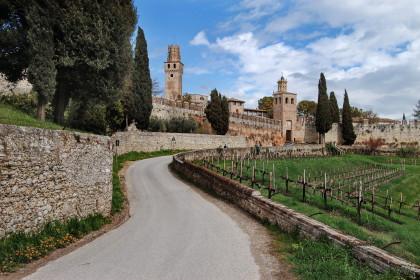 0030 Castello di S.Salvatore - Susegana