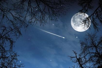 notte_stellata-01